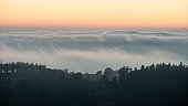 Majestic landscape image of cloud inversion at sunset over Dartmoor National Park in Engand with cloud rolling through forest on horizon