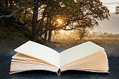 Conceptual composite open book image of Beautiful foggy misty Autumn sunrise over countryside surrounding Crummock Water in Lake District in England