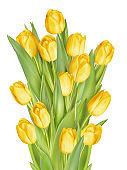 Bouquet of yellow tulips. EPS 10