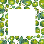 Frame of green apples and leaves. Hand drawing watercolor. Perfect for greeting card, invitation or save the date, book or cover template, just add your text. Botanical illustration