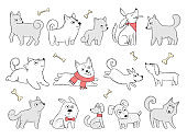 Funny dogs. Domestic puppy characters in action poses sitting jumping playing vector animals