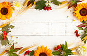 Autumn composition with wheat ears, sunflowers and berries on white wooden table.