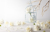 Still life with white flowers in bird cage on light backdrop.