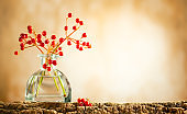 Beautiful autumn red berries in glass bottle on wood  at bokeh background
