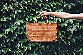 Hand holding basket on plants background .