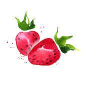 Watercolor sketch strawberry