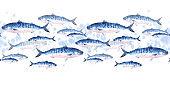 School of mackerel fish