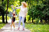 Young beautiful woman wearing disposable medical face mask playing with Beagle dog in the park during coronavirus outbreak. Walking of pets.