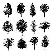 Forest trees silhouettes set