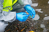 scientist in yellow protective vest, uniform and gloves, collects materials from water, tweezers Petri dish