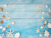 Summer holiday concept with shells and starfish on blue wooden background.