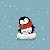 Vector illustration of a cute penguin on the ice floe.