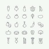 Vegetarian, vegetable, veggies thin line icons set. Vegetable line icons set, outline style.