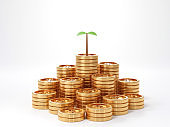 3d render image of tree plant coin of money.money growth concept for bank or banking