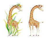 Wild Animal Giraffe with Flowers Vector Clipart