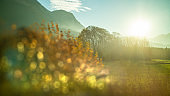 Creative landscape with blurred forefront on a sunny sky background, Austria.