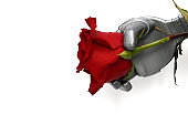 The robot gives flowers. Robot arm and live rose.