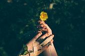 Human hands holding dandelion
