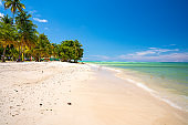Beautiful remote island of Tobago. Empty wild beaches, palm trees, sunny weather.