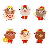 Set of cute cartoon oxen and cows.Happy new year