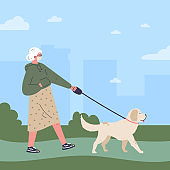 Old woman in white medical mask walking a dog