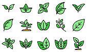 Basil icons set vector flat