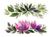 Set watercolor hand-drawn pink and purple flower chrysanthemum or lily and green leaves isolated on white background. Art creative horizontal object for sticker, card, wallpaper, textile, wrapping