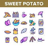 Sweet Potato Batata Collection Icons Set Vector