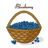 Basket of blueberries ripe juicy sweet berries.