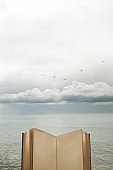 concept of freedom of thought with an open book to the sky
