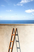 ladder passes the wall,  a door to freedom