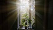 sunlight from rays of sun lit dark room through window with flowers on window sill