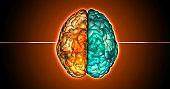 3D rendering directly above hemispheres of human brain illustration