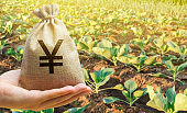 Farmer holding a money bag on the background of cabbage plantations. The development of agriculture industry. Agricultural startups. Lending and subsidizing farmers. Investment and profit. Countryside