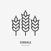 Wheat line icon, vector pictogram of cereals. Organic grain illustration, sign for bakery