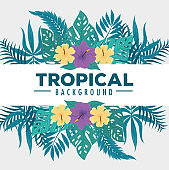 tropical background, flowers yellow and purple colors, branches and tropical leaves, decoration with flowers and tropical leaves