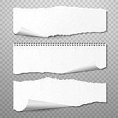 Horizontal Torn Papers Vector Set. Realistic 3d render
