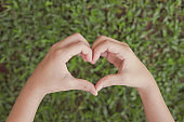Hands making heart shape over green grass, Earth day, world environment day, save the world, love nature planet, eco preservation, sustainable living, vegan, csr social responsibility concept