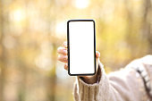 Woman hand showing blank smart phone screen in autumn