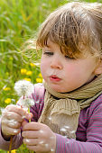 little girl blowing on a dandelion while making a wish