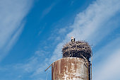 White stork bird in the nest on a water tower on a blue cloudy sky background. Russia, Moscow.