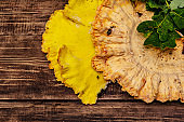 Laetiporus sulphureus, wild forest mushroom. Gourmet food