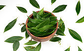 Bay leaves in wooden bowl isolated on white background