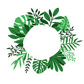 Green leaves circle frame
