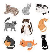 Fanny cartoon cats