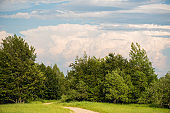 Blue sky with clouds over the forest