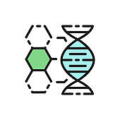 Dna structure, genetics, molecule analysis flat color line icon.