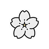 Sakura flower flat color line icon. Isolated on white background