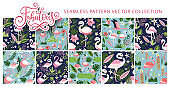 Flamingo bird seamless pattern vector set.