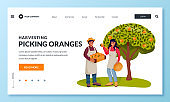 Fall harvesting and agriculture farming concept. Man and woman picking oranges in fruit garden. Vector illustration